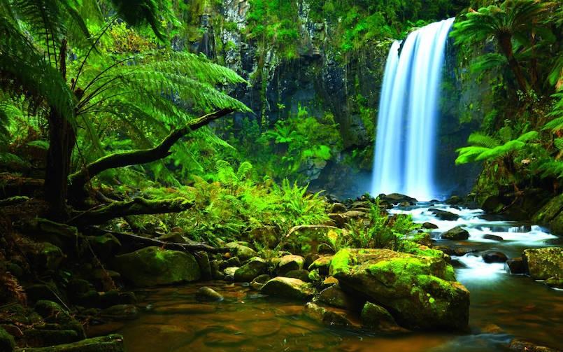 Amazon-Rainforest-Waterfalls