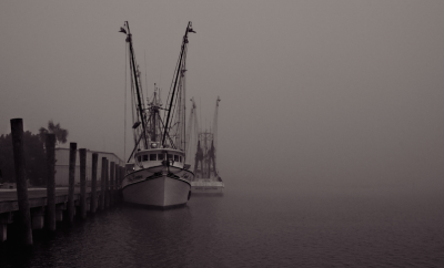 shrimo boats docked in fog