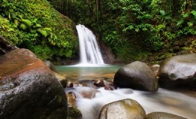 Basse-Terre Island Guadeloupe National Park