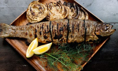 grilled trout with fennel bulbs and lemon