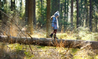 Adorable little girl hiking in forest on beautiful autumn day