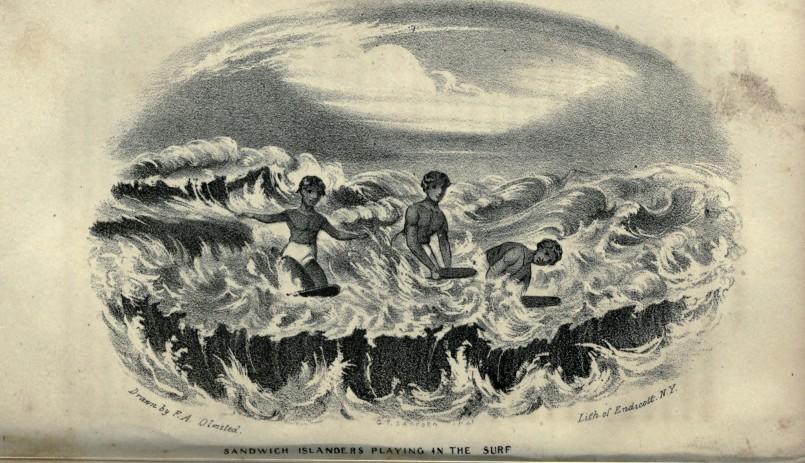 sandwhich islanders surfing