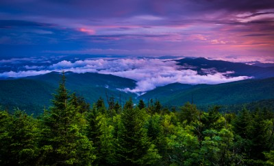 Low clouds in the valley at sunset, seen from Clingman's Dome, Great Smoky Mountains National Park, Tennessee.