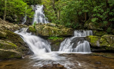Summer foliage at Spruce Flats Falls in the Great Smoky Mountain National Park