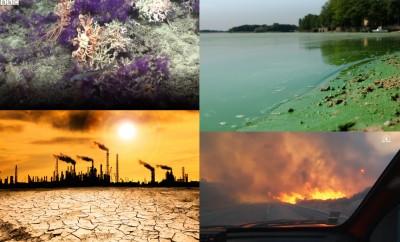 Environmental news CF