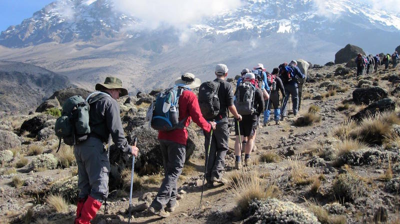 hikers backpacking in line up mt kilimanjaro in africa in cold weather snowy mountain