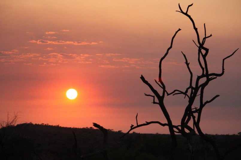 african safari mosetlha bush camp sunset