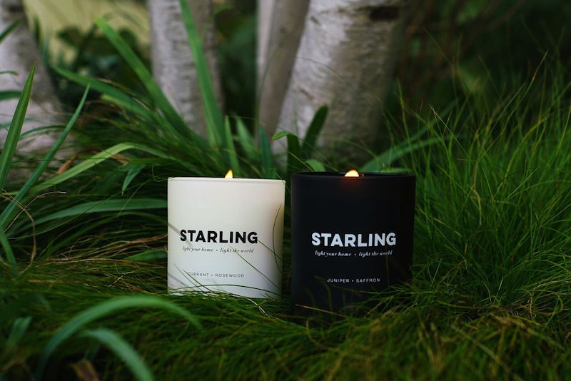 starling candle in green grass sustainable gift guide