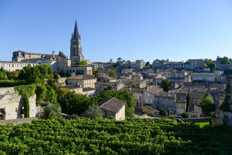 Saint-Emilion-Vineyard landscape-Vineyard south west of France, Bordeaux Vineyard